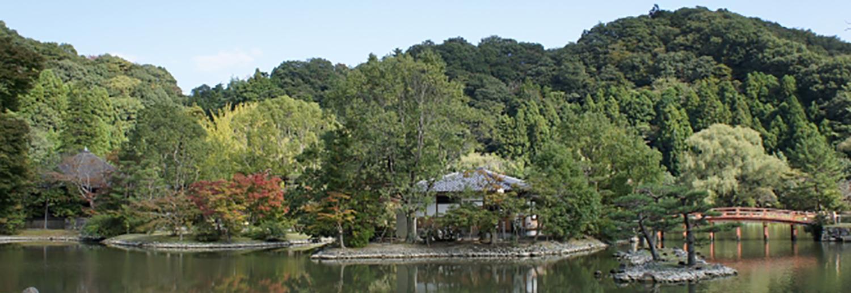 庭と外構編_浄土庭園イメージ
