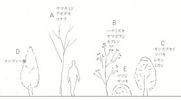 樹木の種類と選び方
