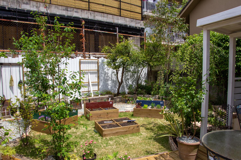 庭と料理を紡ぐ菜園(家庭菜園)