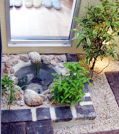 無一本のコハウチワモミジを3度楽しむことのできる坪庭